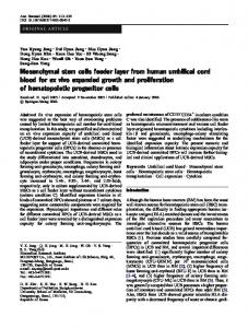 Mesenchymal stem cells feeder layer from human umbilical cord blood ...