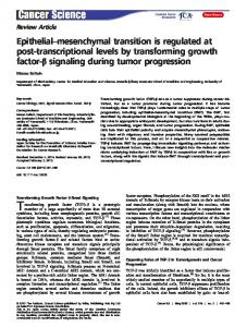 mesenchymal transition is regulated at post& ... - Wiley Online Library