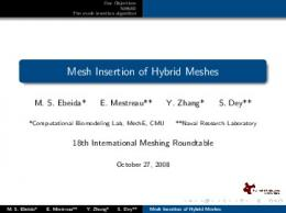 Mesh Insertion of Hybrid Meshes