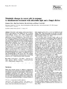 Metabolic changes in carrot cells in response to ... - Springer Link