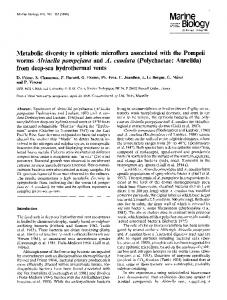 Metabolic diversity in epibiotic microflora associated with the Pompeii ...
