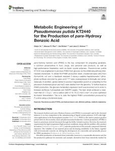 Metabolic Engineering of Pseudomonas putida KT2440 for the ... - Core