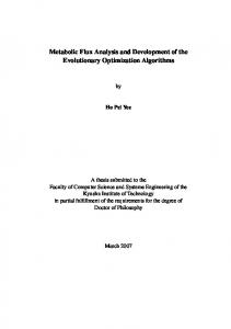 Metabolic Flux Analysis and Development of the