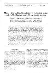 Metabolism and feeding of mesozooplankton in the ... - Inter Research