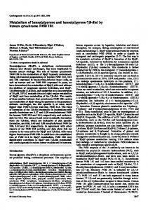 Metabolism of benzo [a] pyrene and benzo [a] pyrene-7, 8-diol by ...