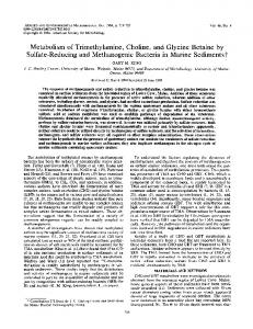 Metabolism of Trimethylamine, Choline,and Glycine Betaine by Sulfate ...