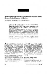 Metallothionein Shows an Age-Related Decrease in Human ... - IOVS