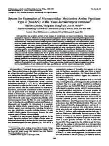 (MetAP2) in the Yeast Saccharomyces cerevisiae - Antimicrobial ...