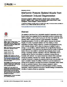 Metformin Protects Skeletal Muscle from