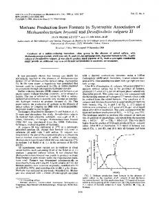 Methane Production from Formate by Syntrophic Association of ...