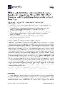 Methyl Gallate Inhibits Osteoclast Formation and