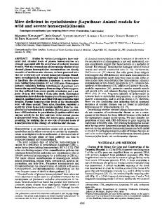 Mice deficient in cystathionine (8-synthase: Animal models for mild ...