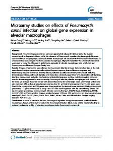 Microarray studies on effects of Pneumocystis carinii ... - BioMedSearch