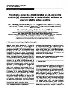 Microbial communities biostimulated by ethanol during uranium (VI ...
