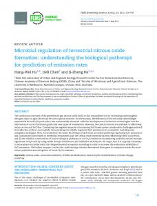 Microbial regulation of terrestrial nitrous oxide formation ...