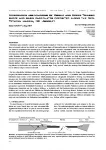 Microfacies associations of Middle and Upper Triassic slope and basin ...
