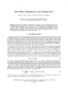 Microfilter Simulations and Scaling Laws - Extras Springer
