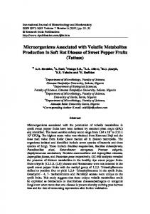 Microorganisms Associated with Volatile Metabolites ...