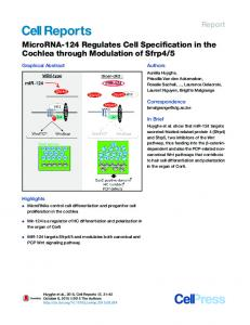 MicroRNA-124 Regulates Cell Specification in the ... - Cell Press