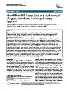 MicroRNA-mRNA interactions in a murine model of hyperoxia-induced ...