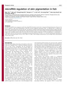 microRNA regulation of skin pigmentation in fish - Journal of Cell ...
