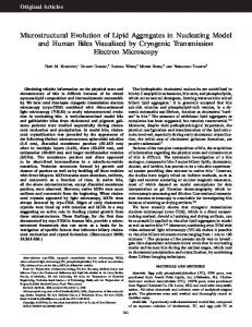 Microstructural evolution of lipid aggregates in nucleating model and ...