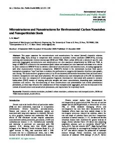 Microstructures and Nanostructures for Environmental Carbon ... - MDPI