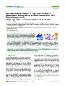 Microwave-Assisted Synthesis of Fe3O4 ... - ACS Publications