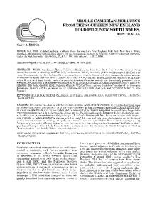 middle cambrian molluscs from the southern new ... - ScienceDirect.com