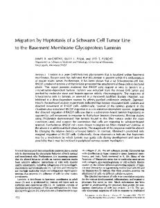 Migration by Haptotaxis of a Schwann Cell Tumor ... - BioMedSearch