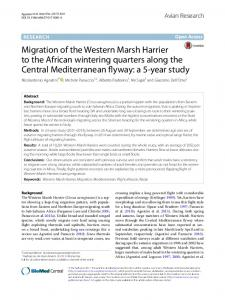 Migration of the Western Marsh Harrier to the African wintering ...