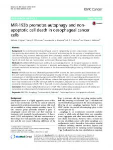 MiR-193b promotes autophagy and non-apoptotic cell death in ...