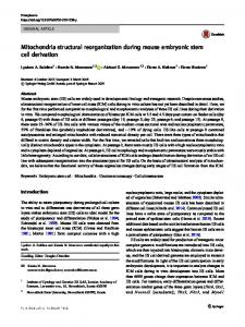 Mitochondria structural reorganization during mouse embryonic stem ...