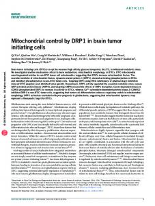 Mitochondrial control by DRP1 in brain tumor initiating ...