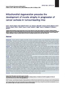 Mitochondrial degeneration precedes the development of muscle ...