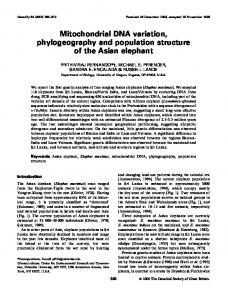Mitochondrial DNA variation, phylogeography and population