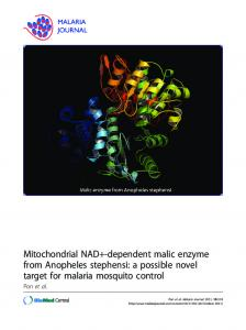 Mitochondrial NAD+-dependent malic enzyme from