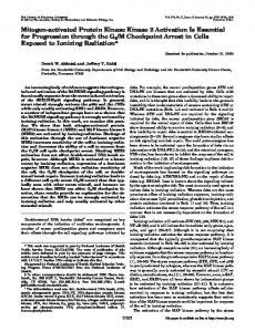 Mitogen-activated Protein Kinase Kinase 2 Activation Is Essential for ...