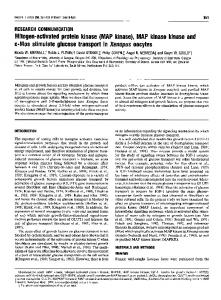 Mitogen-activated protein kinase (MAP kinase), MAP ... - Europe PMC
