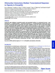 Mitonuclear Interactions Mediate Transcriptional ... - Oxford Academic