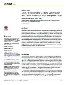 MMP7 Is Required to Mediate Cell Invasion and ... - Semantic Scholar