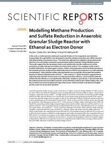 Modelling Methane Production and Sulfate Reduction in Anaerobic ...