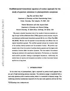Modified-scaled hierarchical equation of motion approach for the study ...