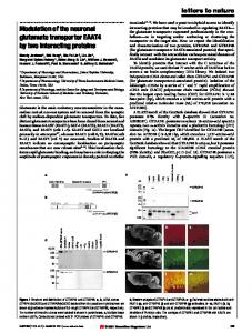 Modulation of the neuronal glutamate transporter EAAT4 by ... - Nature