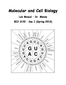 Molecular and Cell Biology Lab