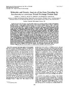 Molecular and Genetic Analysis of the Gene Encoding the ...