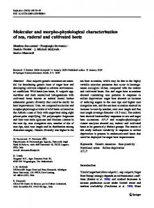 Molecular and morpho-physiological characterization ... - Springer Link