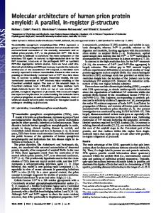 Molecular architecture of human prion protein amyloid: A parallel, in ...