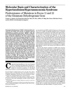 Molecular Basis and Characterization of the Hyperinsulinism ...