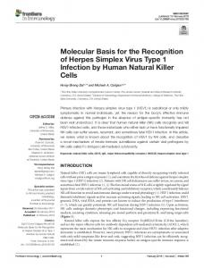Molecular Basis for the Recognition of Herpes